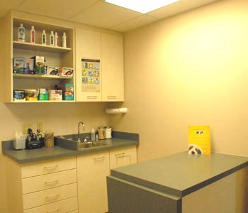 Greencastle Exam Room